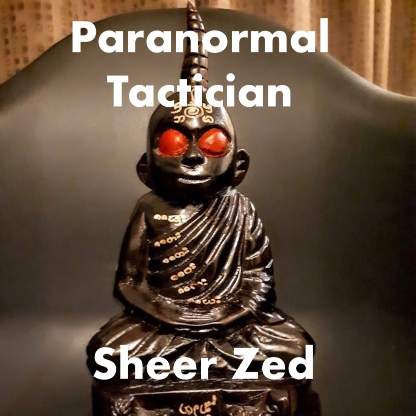 Paranormal Tactician Cover Art by Sheer Zed
